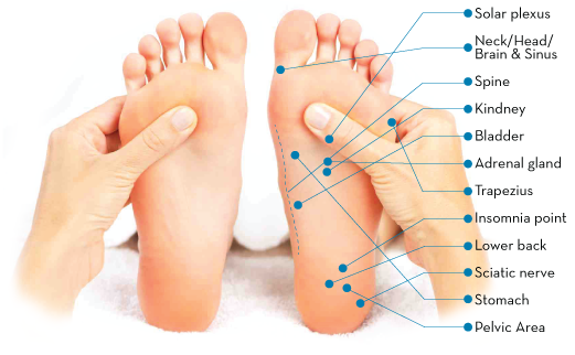 Reflexology Massage Apollo
